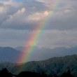 今日も虹!