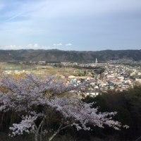 春爛漫-お花見ドライヴ・那須烏山(3)