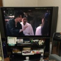 テレビっ子フローラシリーズ 11/19