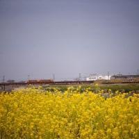 春分の日に石川