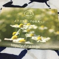 花季コレクション