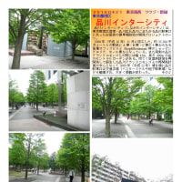散策 「東京南西部-267」  品川インターシティ