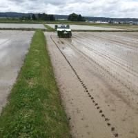 会津よつば農協 とろっぺ会契約米の田植え風景