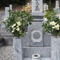 お墓参り2月。
