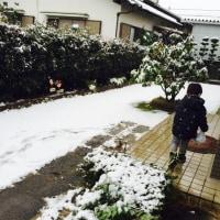 雪がふったー