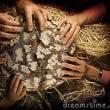 問55「聖徒の交わりを信ず」Ⅰコリント12章14~27節
