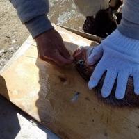 鯛を使ったネパール魚料理。 ご近所さんが集まった楽しい会になりました。