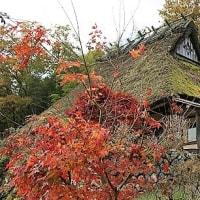 日本茅葺紀行 NO,331 京都府、秋風景