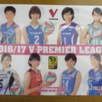 Vリーグ2016/17・チームの顔