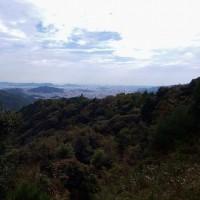 書写山から姫路城が見えるでしょうか。
