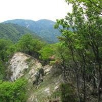 41 JR比良駅から大津ワンゲル道を経て釈迦岳 2017.05.21
