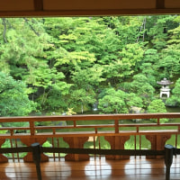 第7回 旧齋藤家別邸を英語でご案内 英語ガイド講座レポート、参加者からの声