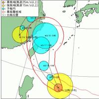 台風16号が接近中〜!ドミトリーゲストハウスみやこぶるー@宮古島