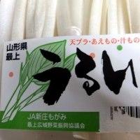 春の訪れ~2/18(土)のお茶