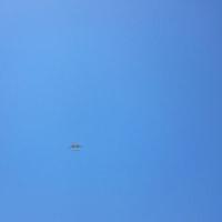 今日は快晴! 飛行機が!?