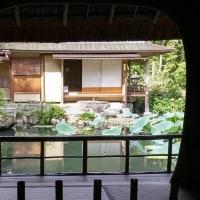 橋本関雪記念館その2