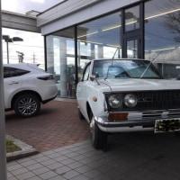 初代コロナマークⅡ展示車を見てきました
