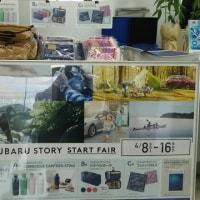 NEW SUBARU STORY START FAIR開催中!