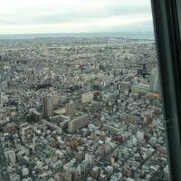 1月14日 東京スカイツリー