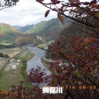 「宮山山崎」の山整備
