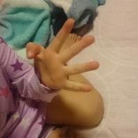 育児:  次女 指で数を数えられるようになりました