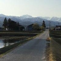 今朝の「立山連峰」