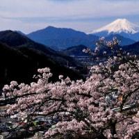 デジブック 『大月の桜と富士山』