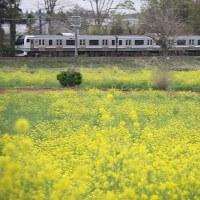 鉄道写真 外房線・春(2017/4/22)