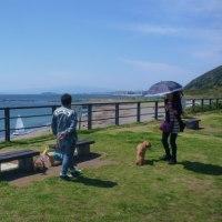 葉山御用邸裏の海岸で遊ぶ