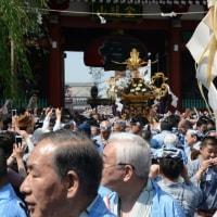 浅草三社祭・・5