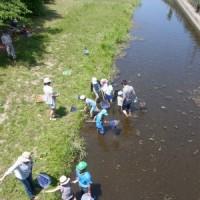 里山体験プログラム「兜川の生きものさがしとトンボの羽化の観察」