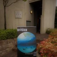 佐治はるみさんの「海中写真展」へ行きました