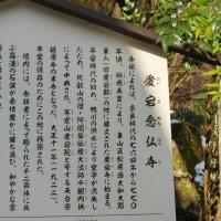 雪の愛宕念仏寺