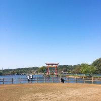 亀山ダムキャンプ