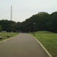 光が丘公園です🍂