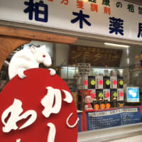 萩市田町商店街のねづみの看板