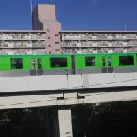 北国からは白の(雪)便り、大阪からは色とりどりのカラーの便り。