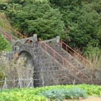 旧魚梁瀬森林鉄道アーチ橋