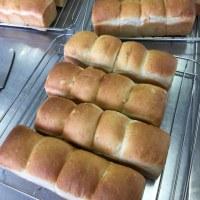 1月のパン教室