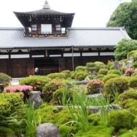 京の1枚 313 新緑の東福寺