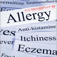 東京銀座 名古屋栄 アレルギー検査には、即時型IgEや遅延型IgG!にしやまクリニックグループ。