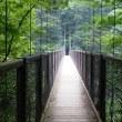 ゆり博と回顧の滝へ