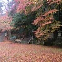 鳥取県 紅葉の名所