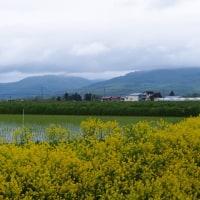 生田原から江別までの風景あれこれ
