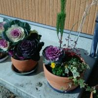 正月用のお花