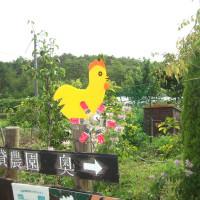 宝塚市中山五月台から車で約10分、茅葺の里で野菜を作ってみませんか?家庭菜園用地分譲・貸農園募集
