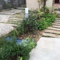 10月の庭。。。その3
