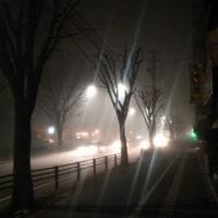 霧に煙る街をゆく