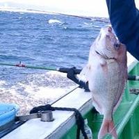 釣りレポ☆2