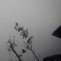 仙台の空28年12月1日